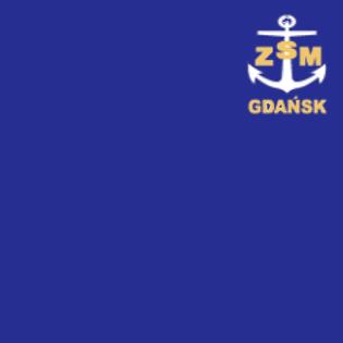 Awans ZSM w Rankingu Perspektywy 2021